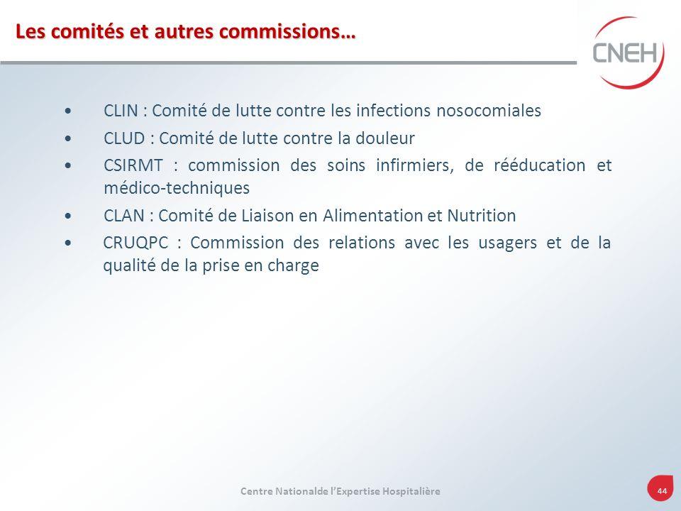 Centre Nationalde lExpertise Hospitalière 44 Les comités et autres commissions… CLIN : Comité de lutte contre les infections nosocomiales CLUD : Comit