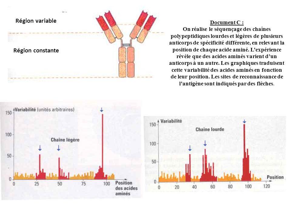 Région variable Région constante Document C : On réalise le séquençage des chaînes polypeptidiques lourdes et légères de plusieurs anticorps de spécif