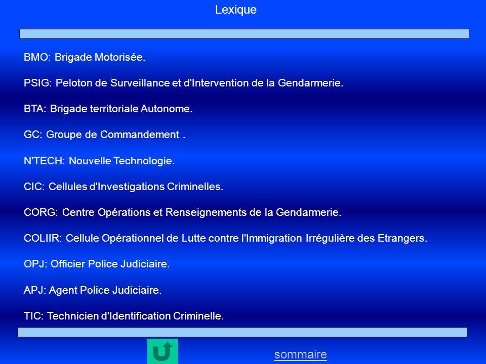sommaire Lexique BMO: Brigade Motorisée. PSIG: Peloton de Surveillance et d'Intervention de la Gendarmerie. BTA: Brigade territoriale Autonome. GC: Gr