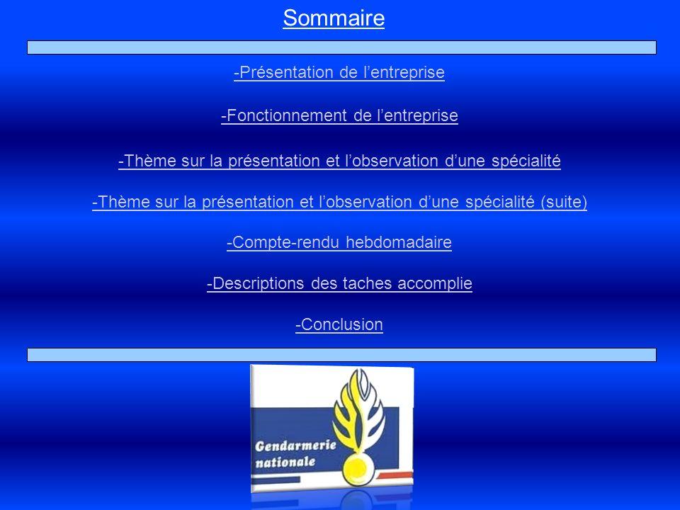 Sommaire -Présentation de lentreprise -Fonctionnement de lentreprise -Thème sur la présentation et lobservation dune spécialité -Thème sur la présenta