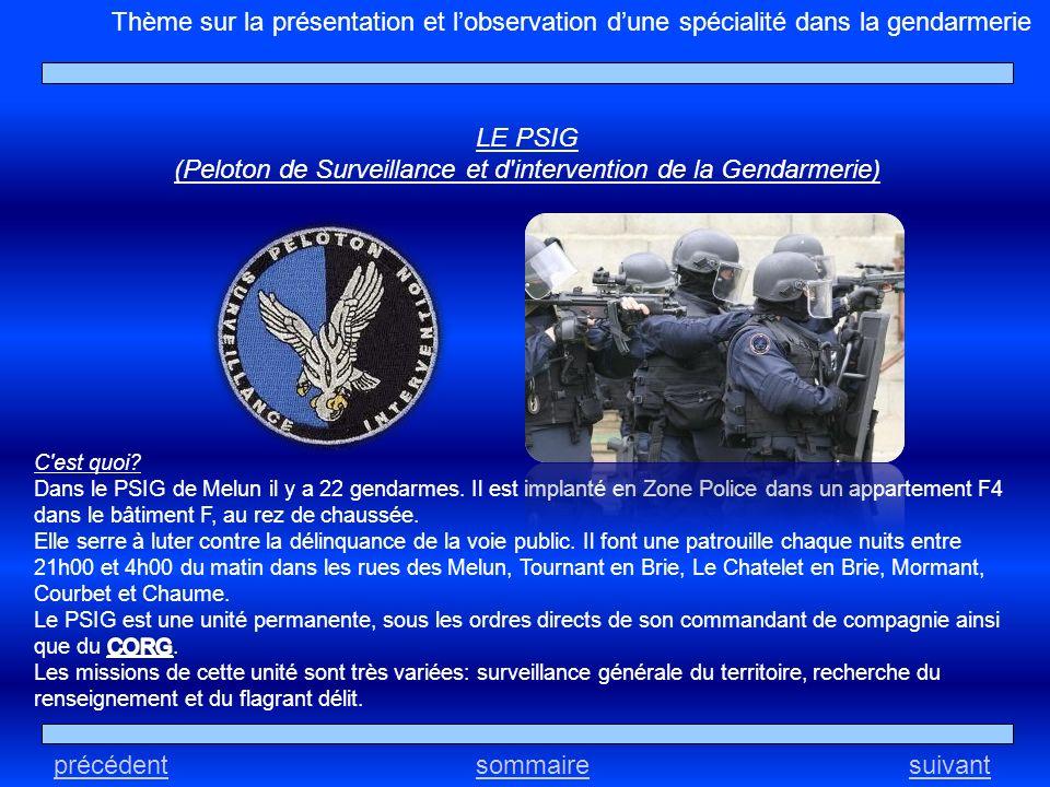 précédentsuivantsommaire Thème sur la présentation et lobservation dune spécialité dans la gendarmerie