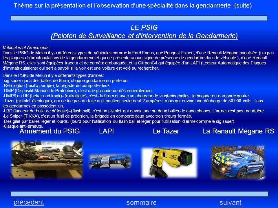 Thème sur la présentation et lobservation dune spécialité dans la gendarmerie (suite) LE PSIG (Peloton de Surveillance et d'intervention de la Gendarm