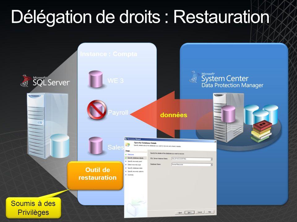 Délégation de droits : Restauration WE 3 Sales Payroll Outil de restauration données Instance : Compta Soumis à des Privilèges Soumis à des Privilèges