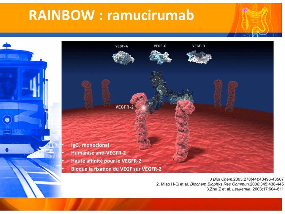 RAINBOW : ramucirumab