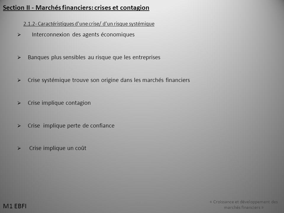 Section II - Marchés financiers: crises et contagion 2.1.2- Caractéristiques dune crise/ dun risque systémique Interconnexion des agents économiques B