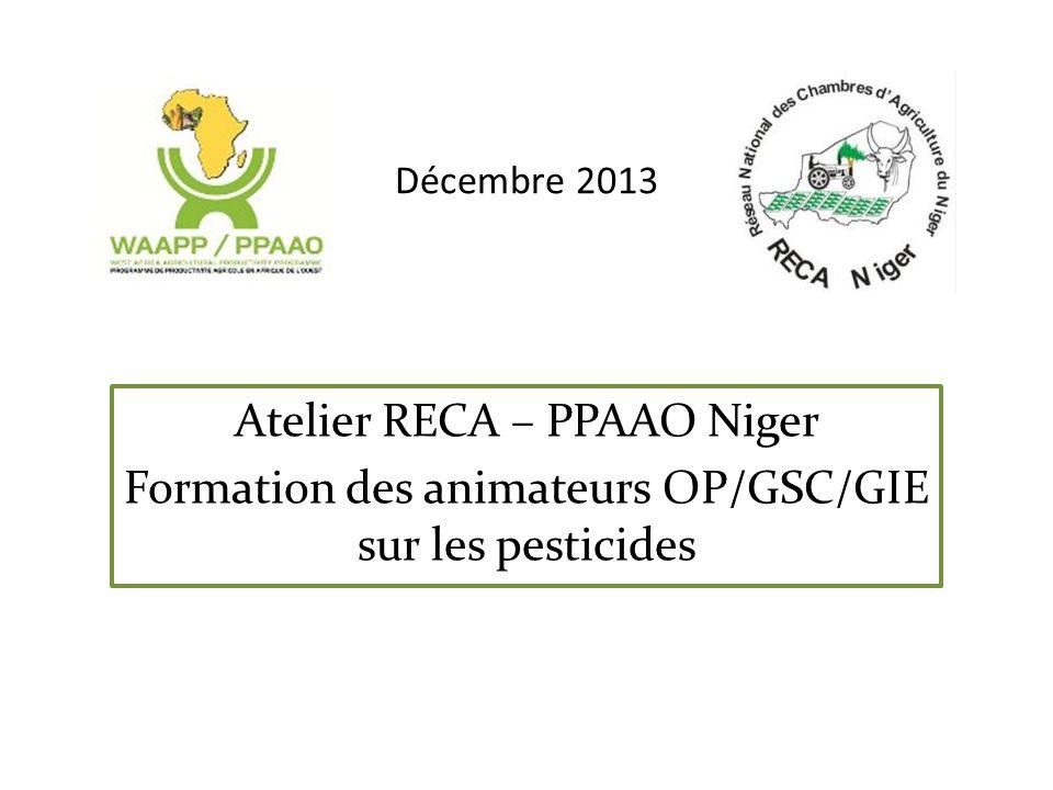 Décembre 2013 Atelier RECA – PPAAO Niger Formation des animateurs OP/GSC/GIE sur les pesticides