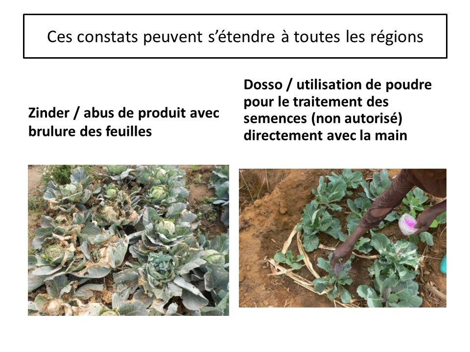 Ces constats peuvent sétendre à toutes les régions Zinder / abus de produit avec brulure des feuilles Dosso / utilisation de poudre pour le traitement des semences (non autorisé) directement avec la main