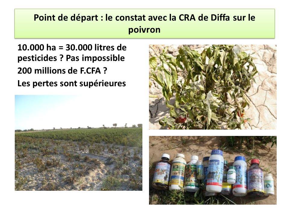 Point de départ : le constat avec la CRA de Diffa sur le poivron 10.000 ha = 30.000 litres de pesticides ? Pas impossible 200 millions de F.CFA ? Les