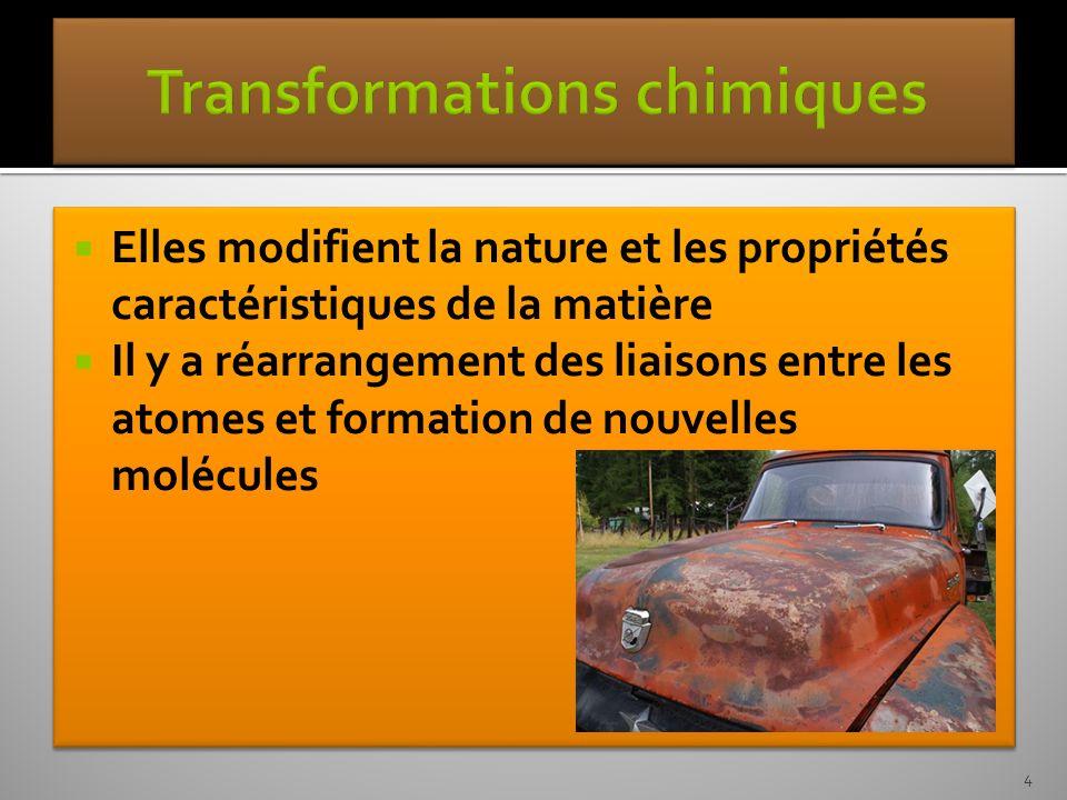 Cest la réaction inverse de la photosynthèse Les produits de la photosynthèse sont les réactifs de la respiration cellulaire et vice versa.