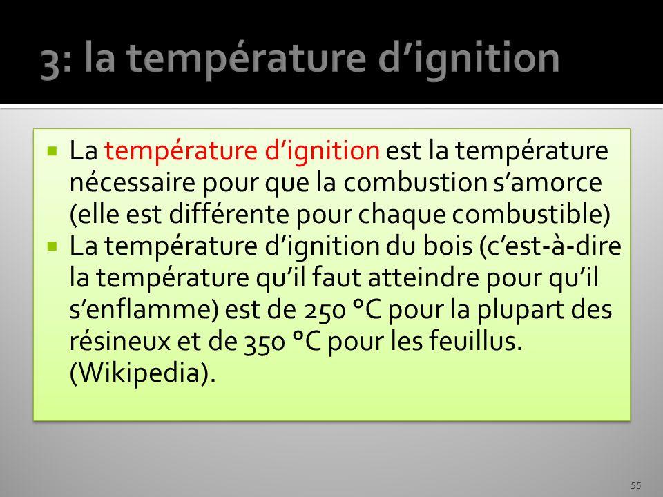 La température dignition est la température nécessaire pour que la combustion samorce (elle est différente pour chaque combustible) La température dig