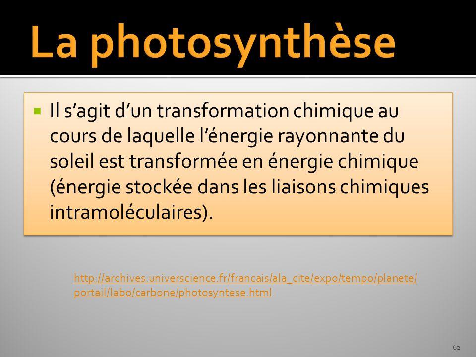 Il sagit dun transformation chimique au cours de laquelle lénergie rayonnante du soleil est transformée en énergie chimique (énergie stockée dans les