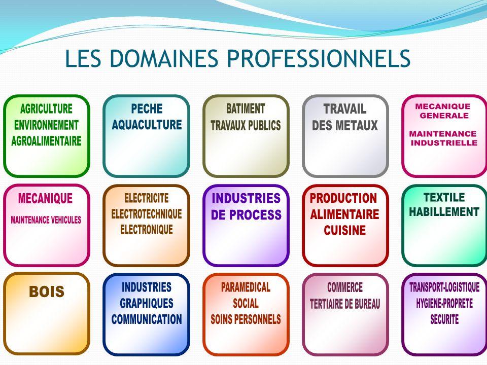 LES DOMAINES PROFESSIONNELS
