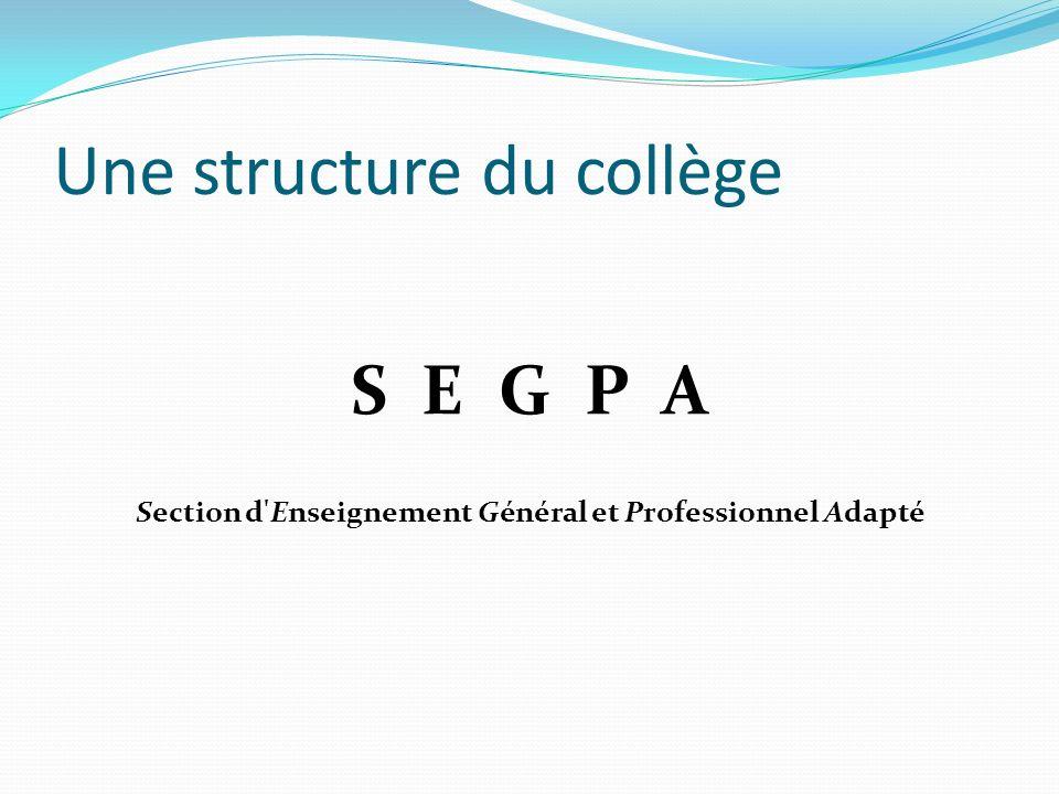 Une structure du collège S E G P A Section d'Enseignement Général et Professionnel Adapté