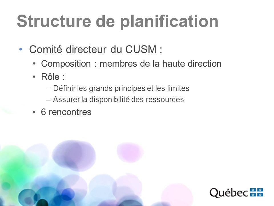 Structure de planification Comité directeur du CUSM : Composition : membres de la haute direction Rôle : –Définir les grands principes et les limites