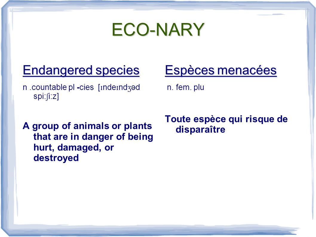 ECO-NARY Endangered species n.countable pl -cies [ ɪ nde ɪ nd ʒ əd spi: ʃ i:z] A group of animals or plants that are in danger of being hurt, damaged, or destroyed Espèces menacées n.