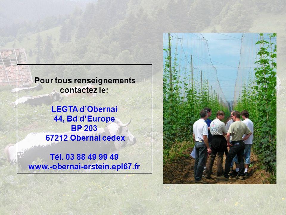 Pour tous renseignements contactez le: LEGTA dObernai 44, Bd dEurope BP 203 67212 Obernai cedex Tél.