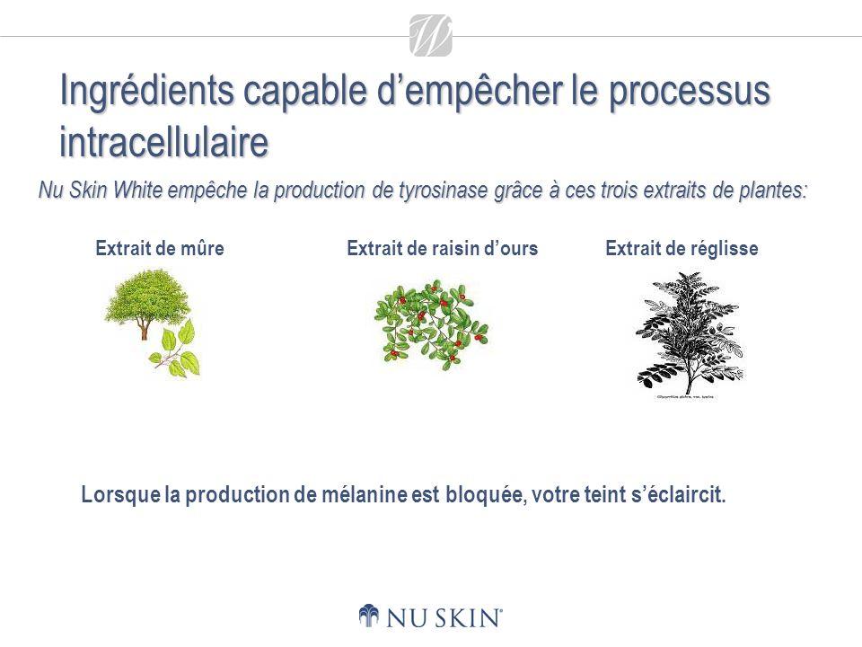 Nu Skin White empêche la production de tyrosinase grâce à ces trois extraits de plantes: Lorsque la production de mélanine est bloquée, votre teint séclaircit.