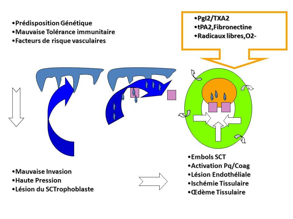 Mauvaise InvasionMauvaise Invasion Haute PressionHaute Pression Lésion du SCTrophoblasteLésion du SCTrophoblaste Embols SCTEmbols SCT Activation Pq/Co