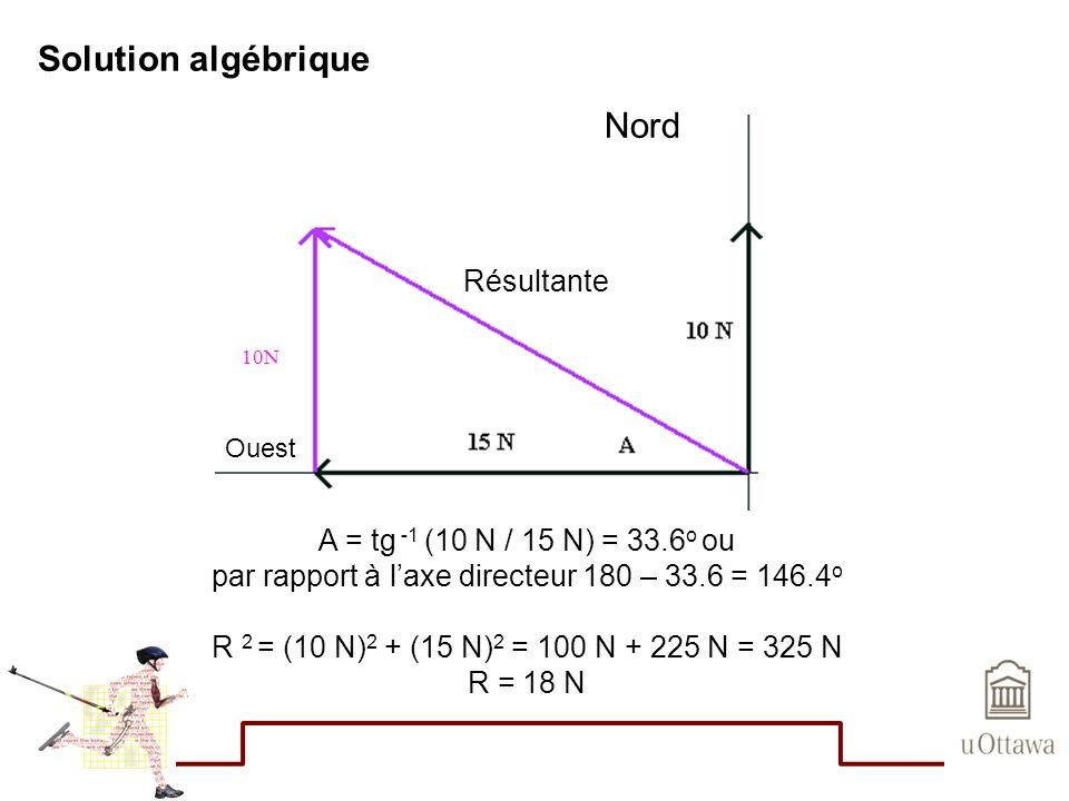 Solution algébrique A = tg -1 (10 N / 15 N) = 33.6 o ou par rapport à laxe directeur 180 – 33.6 = 146.4 o R 2 = (10 N) 2 + (15 N) 2 = 100 N + 225 N =
