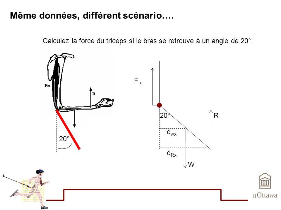 Même données, différent scénario…. 20° Calculez la force du triceps si le bras se retrouve à un angle de 20°. R W FmFm 20° d wx d Rx