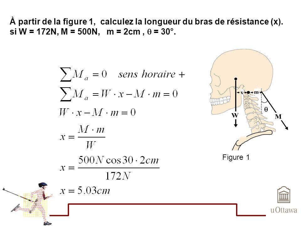 À partir de la figure 1, calculez la longueur du bras de résistance (x). si W = 172N, M = 500N, m = 2cm, = 30°. Figure 1