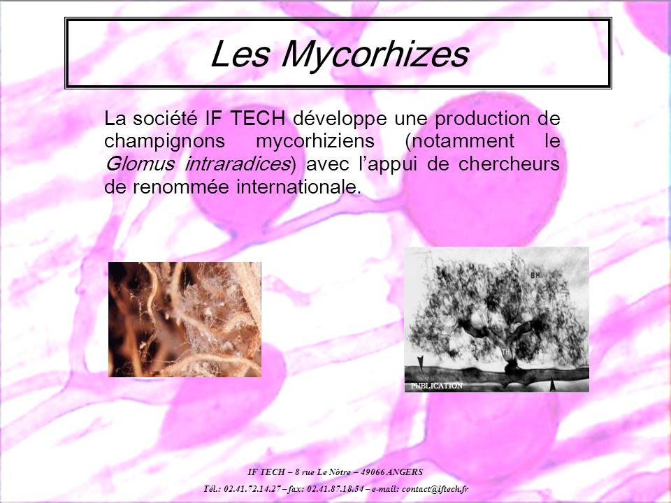 La société IF TECH développe une production de champignons mycorhiziens (notamment le Glomus intraradices) avec lappui de chercheurs de renommée internationale.