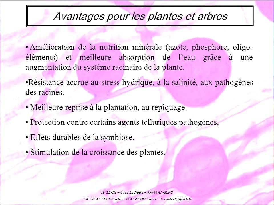 Avantages pour les plantes et arbres Amélioration de la nutrition minérale (azote, phosphore, oligo- éléments) et meilleure absorption de leau grâce à une augmentation du système racinaire de la plante.