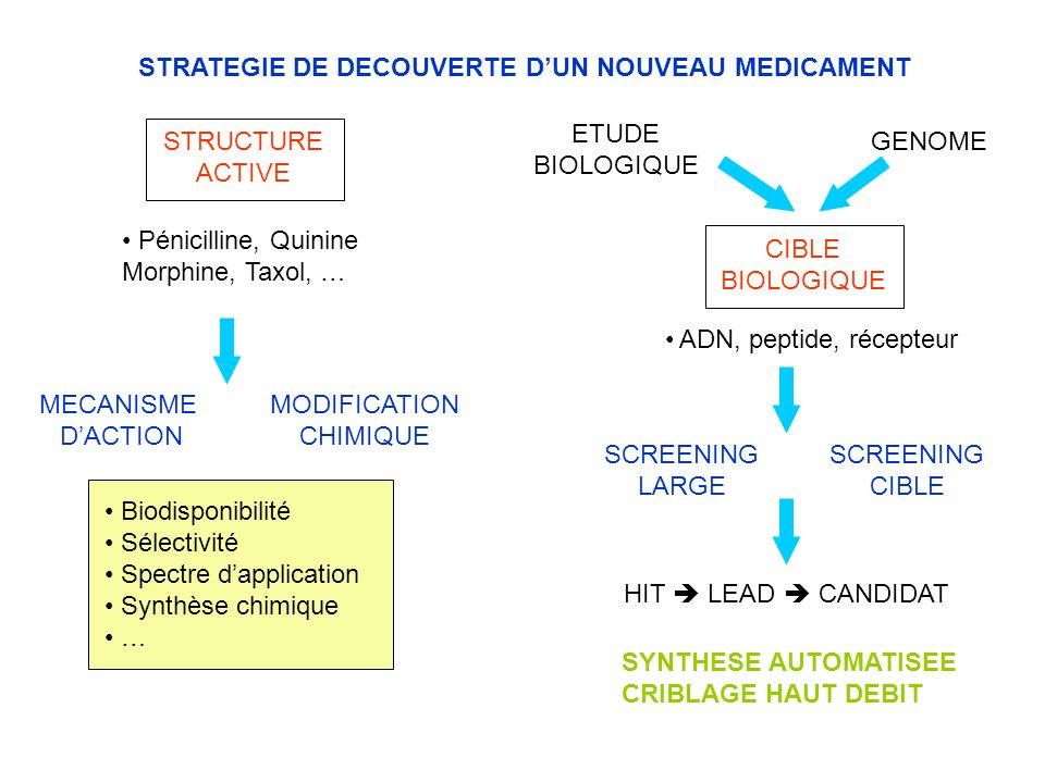 STRATEGIE DE DECOUVERTE DUN NOUVEAU MEDICAMENT STRUCTURE ACTIVE MECANISME DACTION MODIFICATION CHIMIQUE Biodisponibilité Sélectivité Spectre dapplicat
