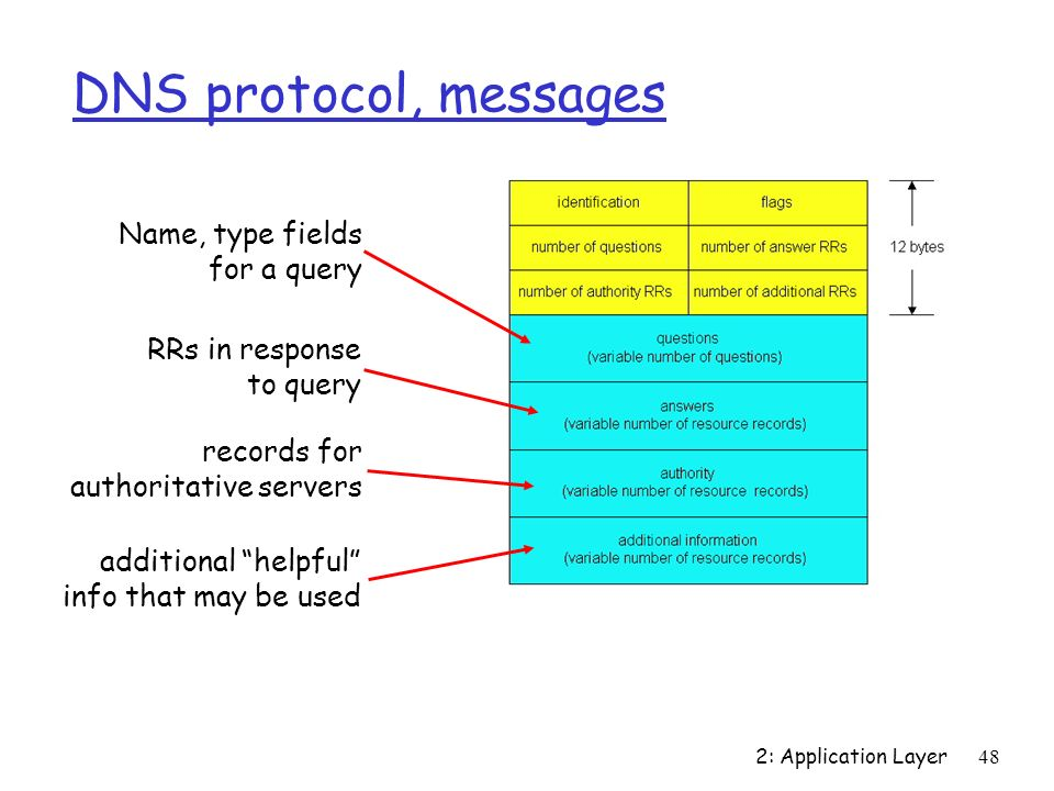 2: Application Layer48 DNS protocol, messages Name, type fields for a query RRs in response to query records for authoritative servers additional help