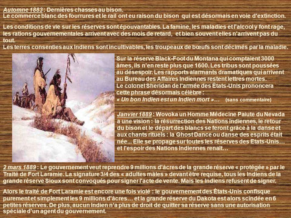 28 février 1877 : Nouvelle violation par les États Unis du traité de Fort Laramie, et du 5ème amendement de la constitution américaine car la colonisa
