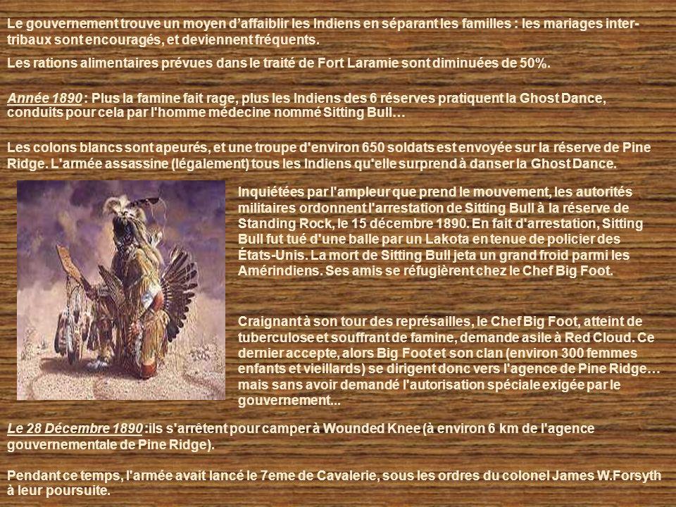 Automne 1883 : Dernières chasses au bison. Le commerce blanc des fourrures et le rail ont eu raison du bison qui est désormais en voie d'extinction. L