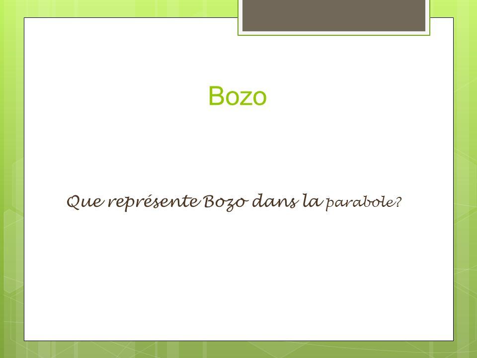 Bozo Que représente Bozo dans la parabole?