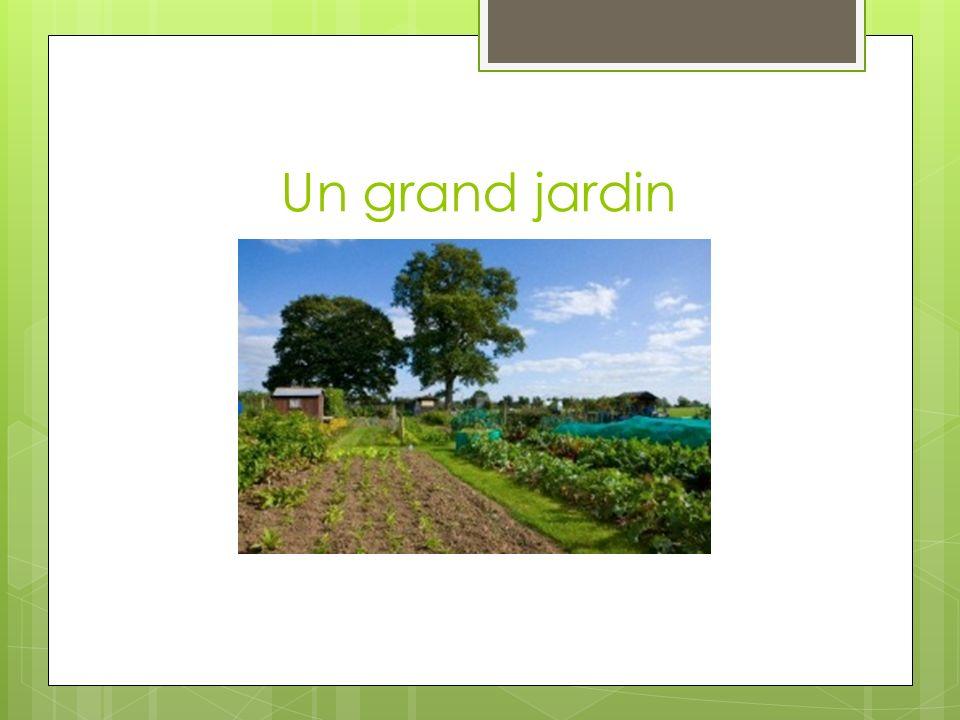 Le jardin Que représente le jardin dans la parabole dont le personnage principal est Bozo?
