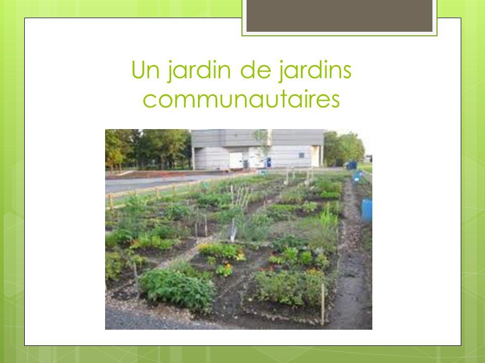 Un jardin de jardins communautaires
