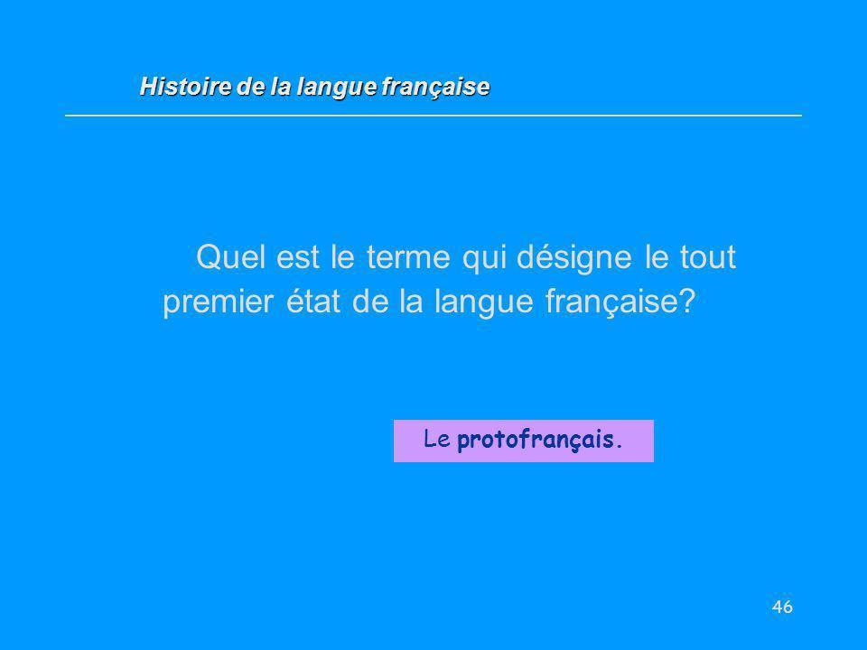 46 Quel est le terme qui désigne le tout premier état de la langue française? Le protofrançais. Histoire de la langue française