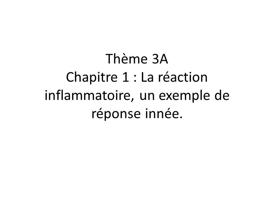 Thème 3A Chapitre 1 : La réaction inflammatoire, un exemple de réponse innée.