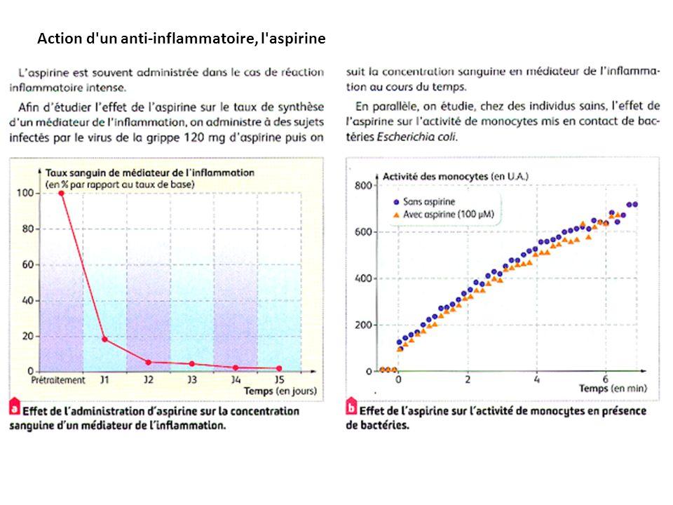 Action d'un anti-inflammatoire, l'aspirine