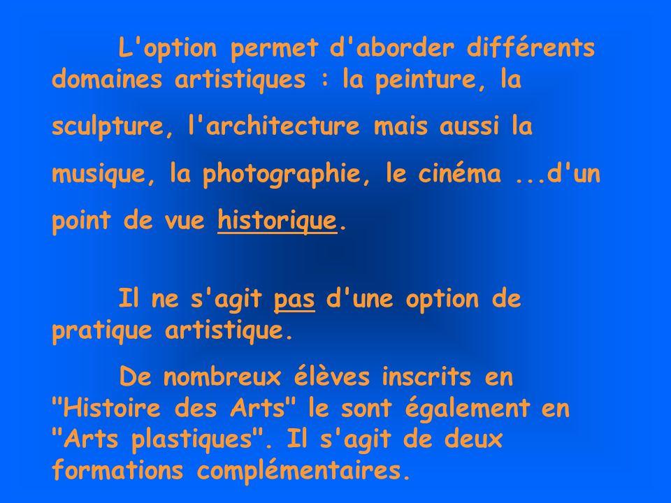 L option permet d aborder différents domaines artistiques : la peinture, la sculpture, l architecture mais aussi la musique, la photographie, le cinéma...d un point de vue historique.