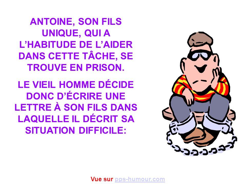 ANTOINE, SON FILS UNIQUE, QUI A LHABITUDE DE LAIDER DANS CETTE TÂCHE, SE TROUVE EN PRISON.