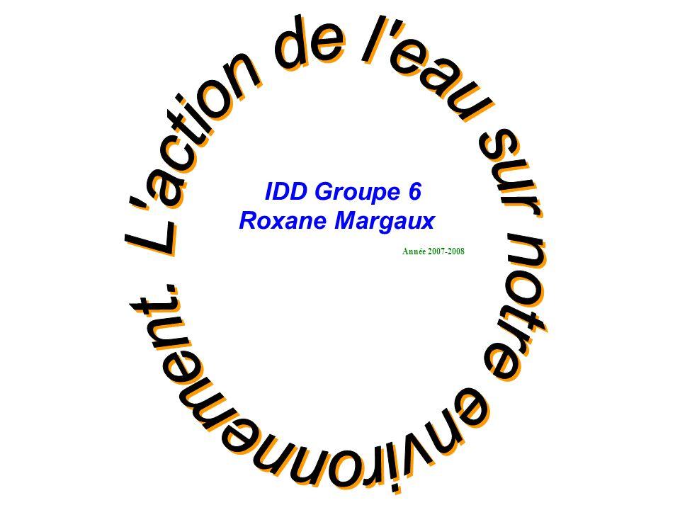 IDD Groupe 6 Roxane Margaux Année 2007-2008