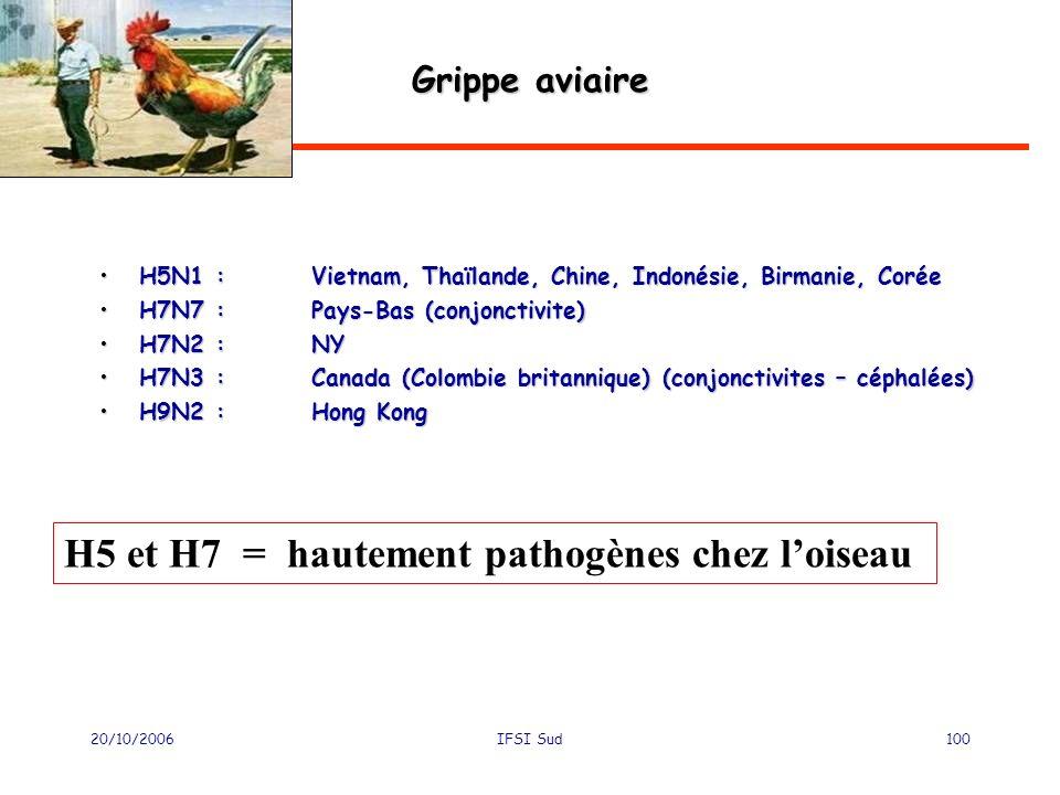 20/10/2006IFSI Sud100 Grippe aviaire H5N1 :Vietnam, Thaïlande, Chine, Indonésie, Birmanie, CoréeH5N1 :Vietnam, Thaïlande, Chine, Indonésie, Birmanie, Corée H7N7 :Pays-Bas (conjonctivite)H7N7 :Pays-Bas (conjonctivite) H7N2 :NYH7N2 :NY H7N3 :Canada (Colombie britannique) (conjonctivites – céphalées)H7N3 :Canada (Colombie britannique) (conjonctivites – céphalées) H9N2 : Hong KongH9N2 : Hong Kong H5 et H7 = hautement pathogènes chez loiseau