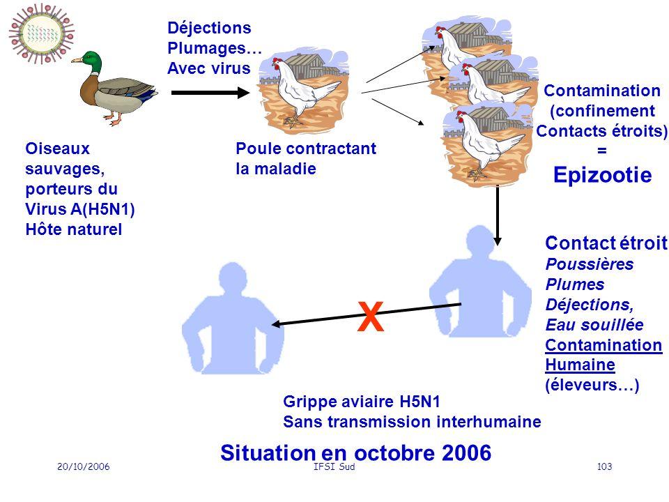 20/10/2006IFSI Sud103 Oiseaux sauvages, porteurs du Virus A(H5N1) Hôte naturel Déjections Plumages… Avec virus Poule contractant la maladie Contact étroit Poussières Plumes Déjections, Eau souillée Contamination Humaine (éleveurs…) X Grippe aviaire H5N1 Sans transmission interhumaine Situation en octobre 2006 Contamination (confinement Contacts étroits) = Epizootie