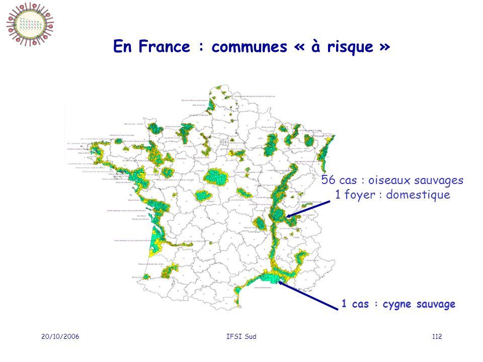 20/10/2006IFSI Sud112 En France : communes « à risque » 56 cas : oiseaux sauvages 1 foyer : domestique 1 cas : cygne sauvage
