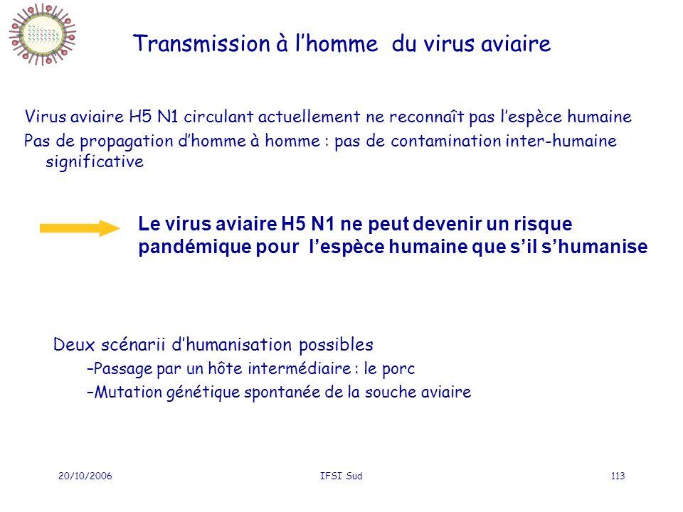 20/10/2006IFSI Sud113 Virus aviaire H5 N1 circulant actuellement ne reconnaît pas lespèce humaine Pas de propagation dhomme à homme : pas de contamination inter-humaine significative Transmission à lhomme du virus aviaire Le virus aviaire H5 N1 ne peut devenir un risque pandémique pour lespèce humaine que sil shumanise Deux scénarii dhumanisation possibles –Passage par un hôte intermédiaire : le porc –Mutation génétique spontanée de la souche aviaire