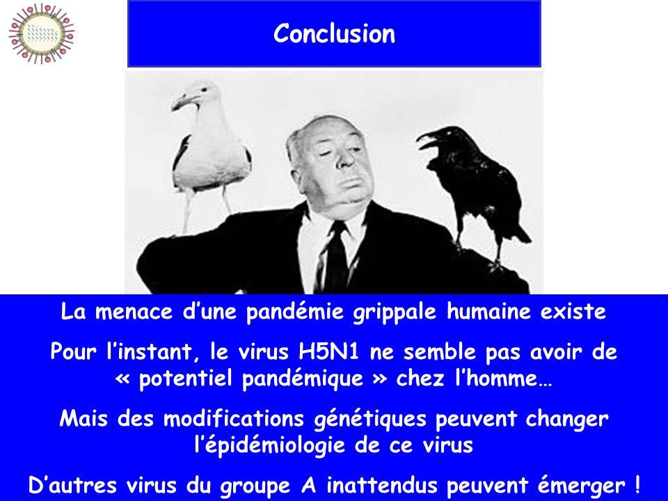 20/10/2006IFSI Sud143 Conclusion La menace dune pandémie grippale humaine existe Pour linstant, le virus H5N1 ne semble pas avoir de « potentiel pandé