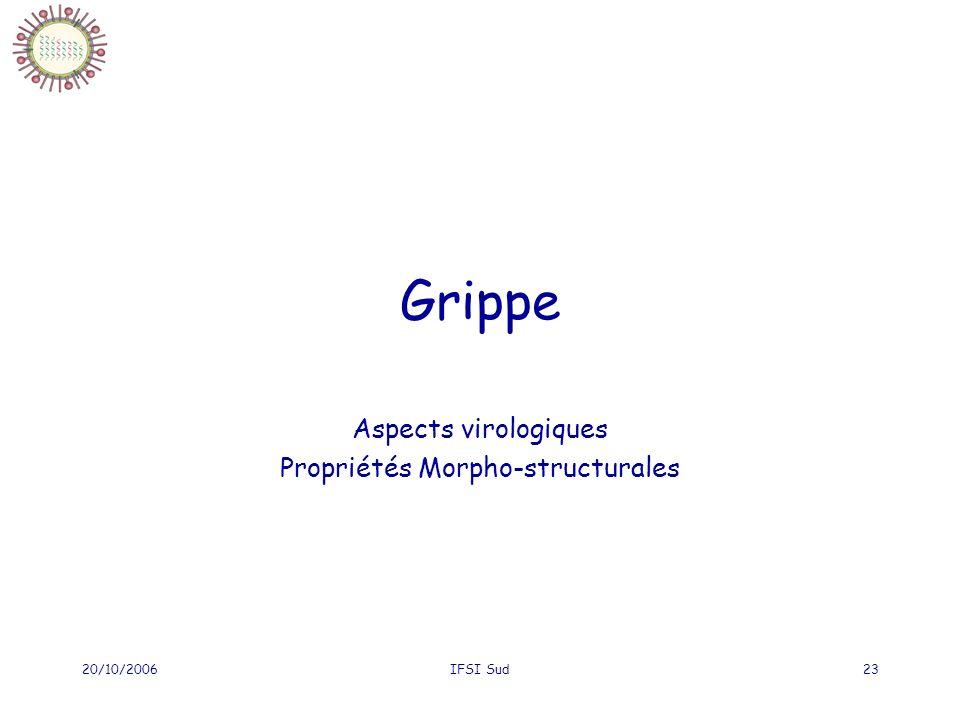 20/10/2006IFSI Sud23 Grippe Aspects virologiques Propriétés Morpho-structurales