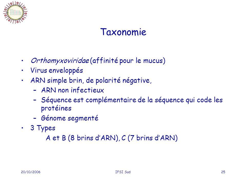 20/10/2006IFSI Sud25 Taxonomie Orthomyxoviridae (affinité pour le mucus) Virus enveloppés ARN simple brin, de polarité négative, –ARN non infectieux –