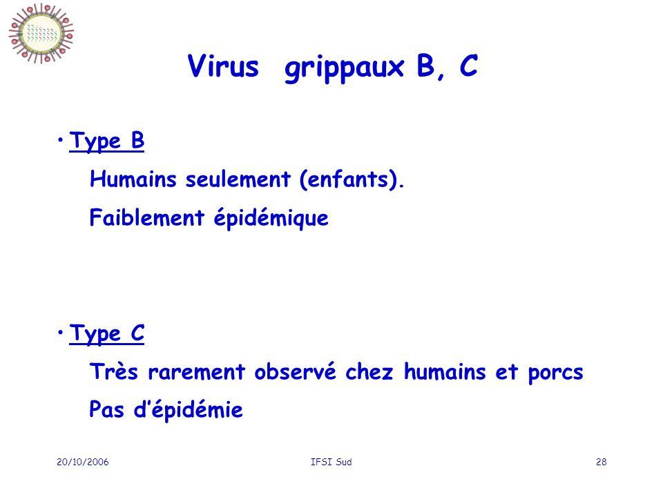 20/10/2006IFSI Sud28 Type B Humains seulement (enfants). Faiblement épidémique Type C Très rarement observé chez humains et porcs Pas dépidémie Virus