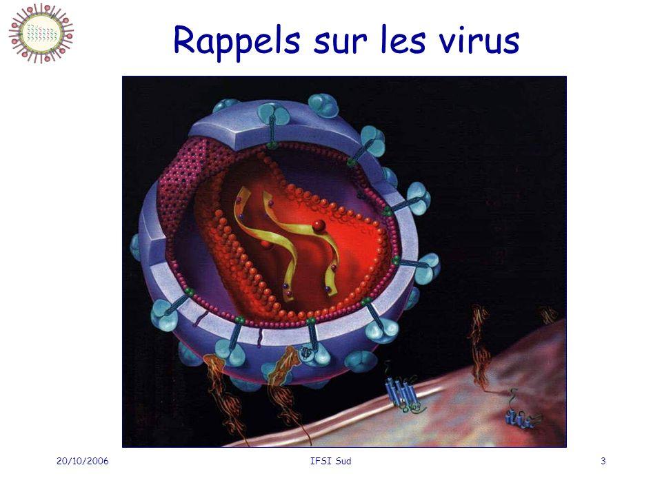 20/10/2006IFSI Sud3 Rappels sur les virus