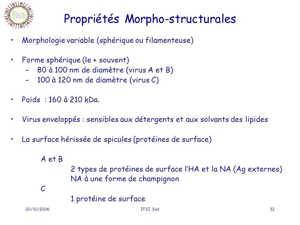 20/10/2006IFSI Sud32 Propriétés Morpho-structurales Morphologie variable (sphérique ou filamenteuse) Forme sphérique (le + souvent) – 80 à 100 nm de diamètre (virus A et B) – 100 à 120 nm de diamètre (virus C) Poids : 160 à 210 kDa.